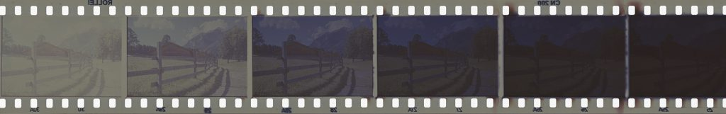 A part of the positive film strip after developing.